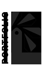 Portfolio Lite