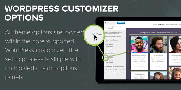 WordPress Customizer Options