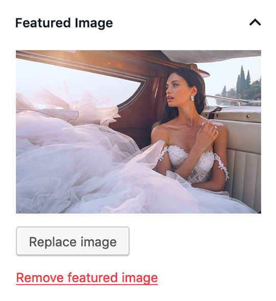 WordPress Featured Image Option