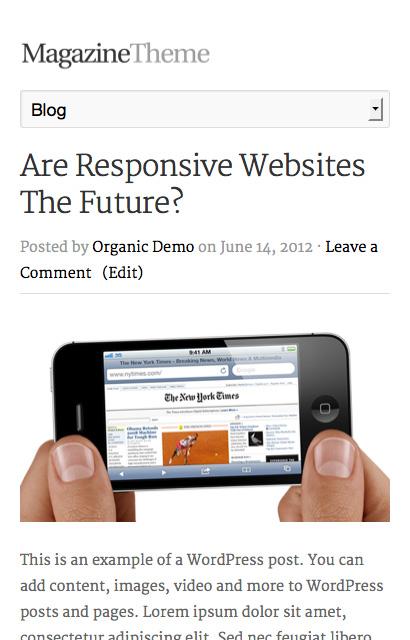 Magazine Theme - Beautiful, Responsive WordPress Themes - Organic Themes
