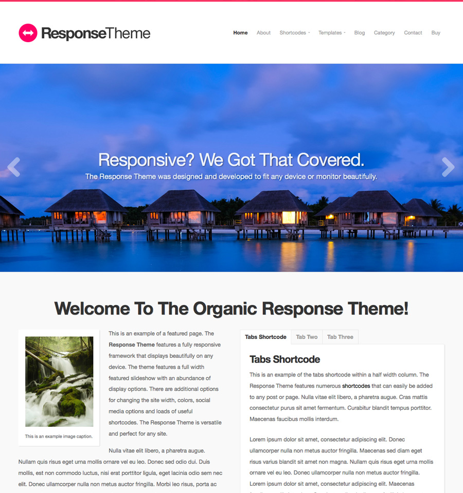 response-wordpress-theme