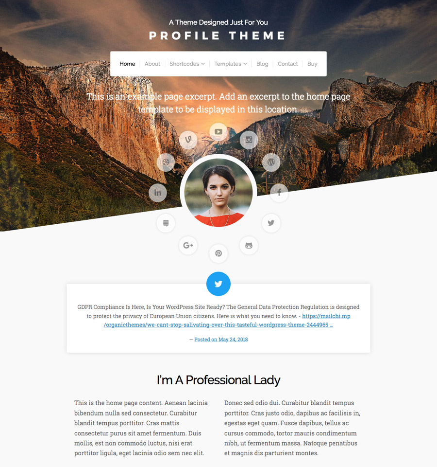 Profile Theme  A WordPress Theme