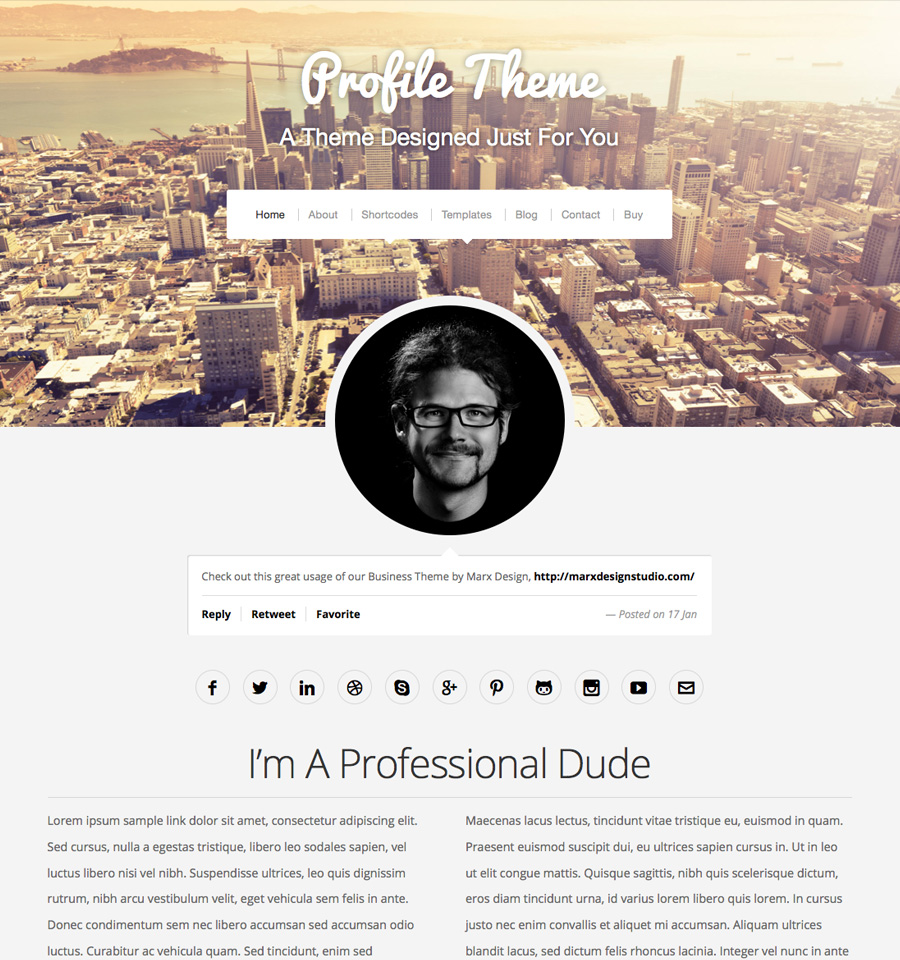 profile-wordpress-theme