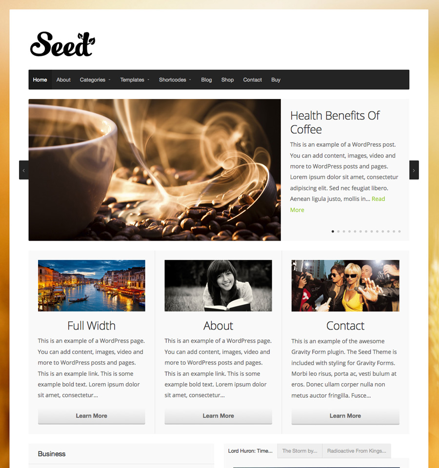 seed-wordpress-theme