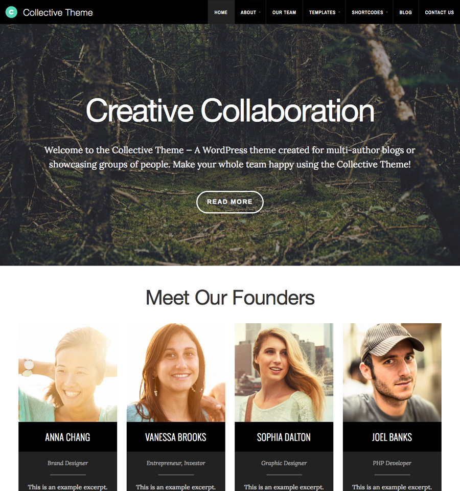 Collective Theme - Beautiful, Responsive WordPress Themes