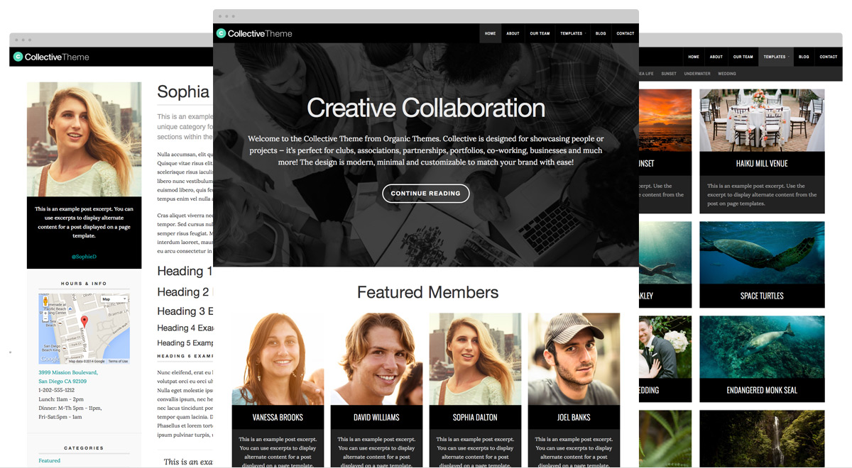 collective-wpcom