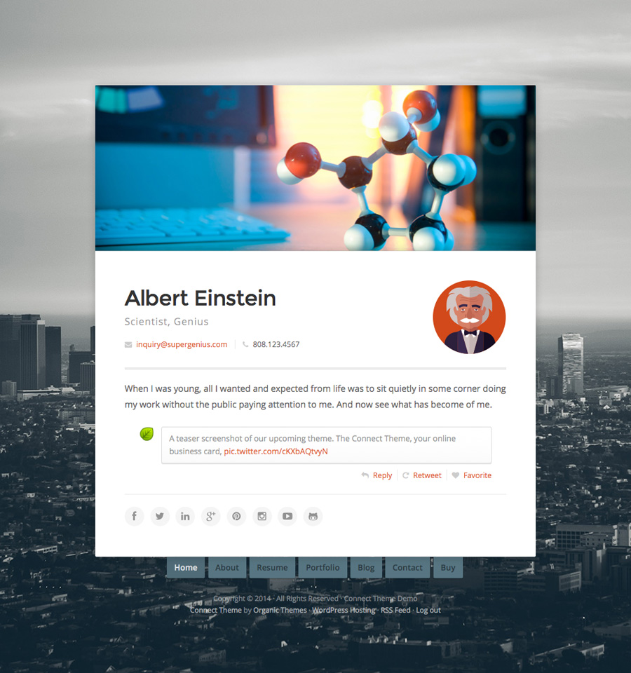 online resume wordpress theme