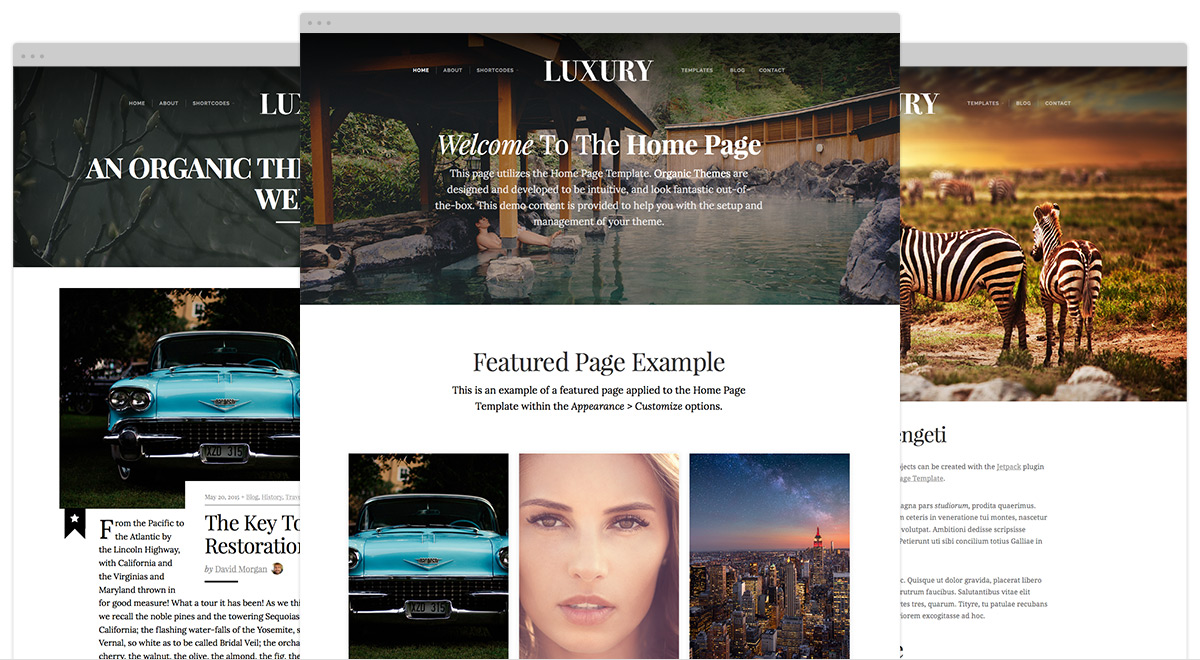 luxury-theme