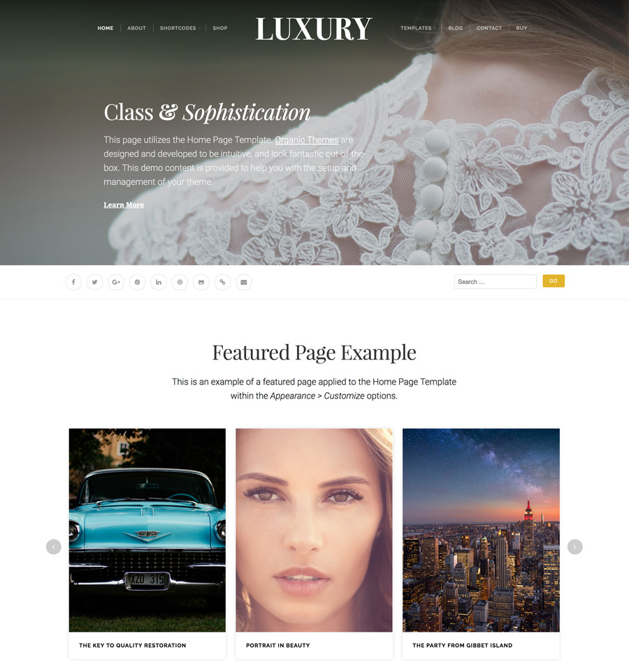 WordPress Luxury Theme