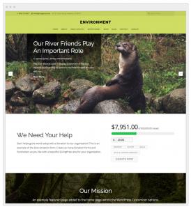 nonprofit-environment-website
