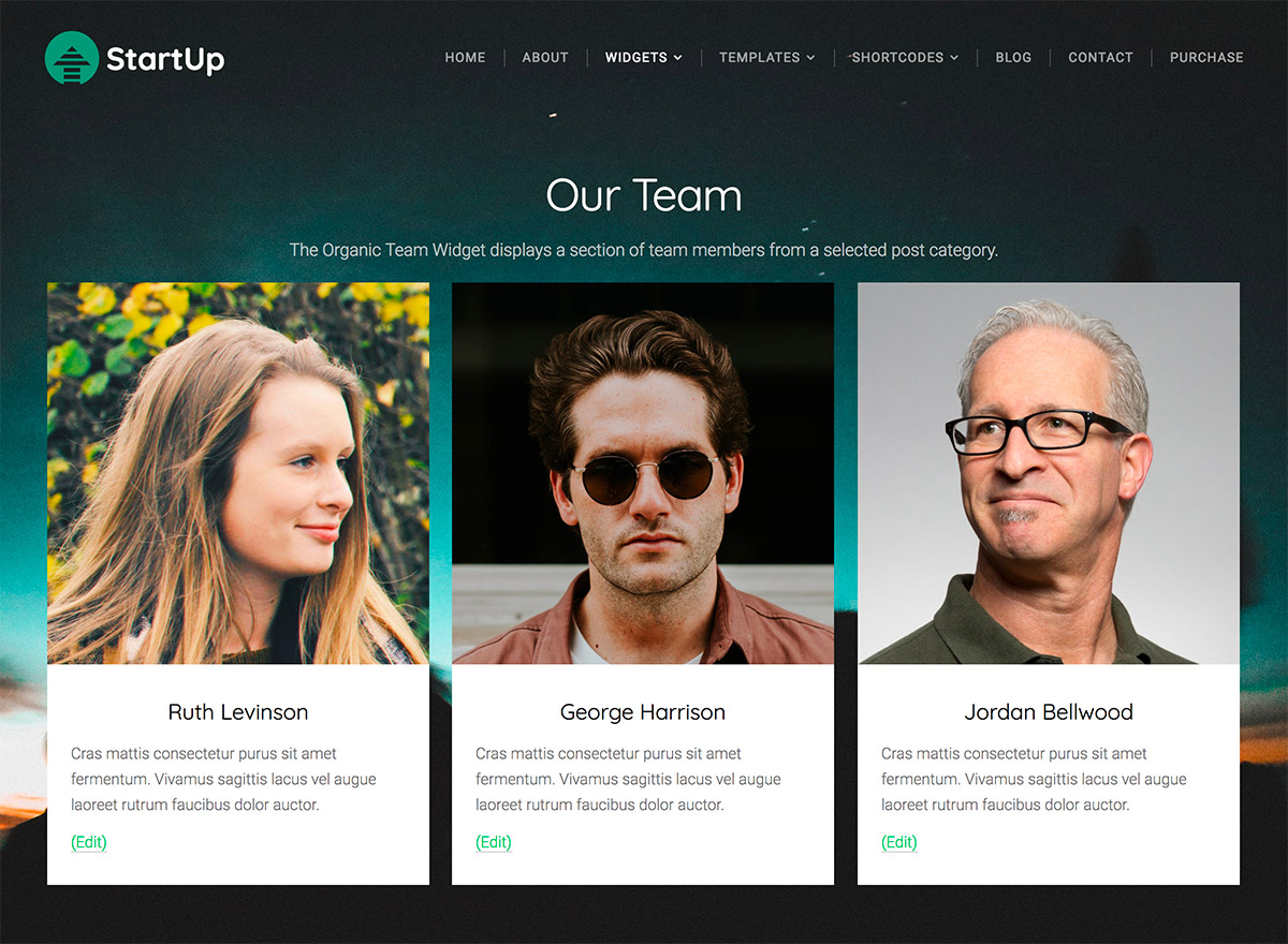 How To: Add A Team Members Section To A WordPress Page - Beautiful ...