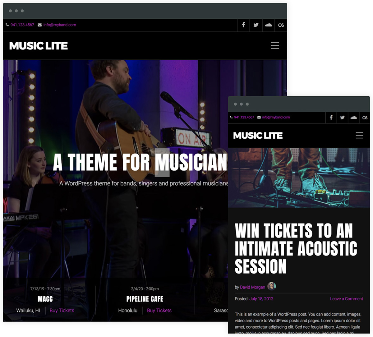 a free wordpress theme for musicians and bands