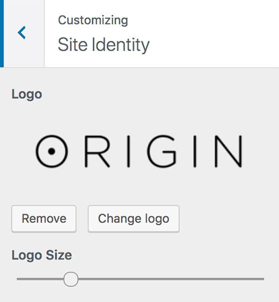 WordPress Theme Logo Resizer