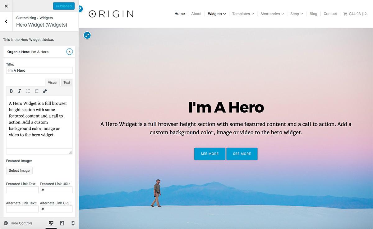 Origin Theme Customizer Widgets