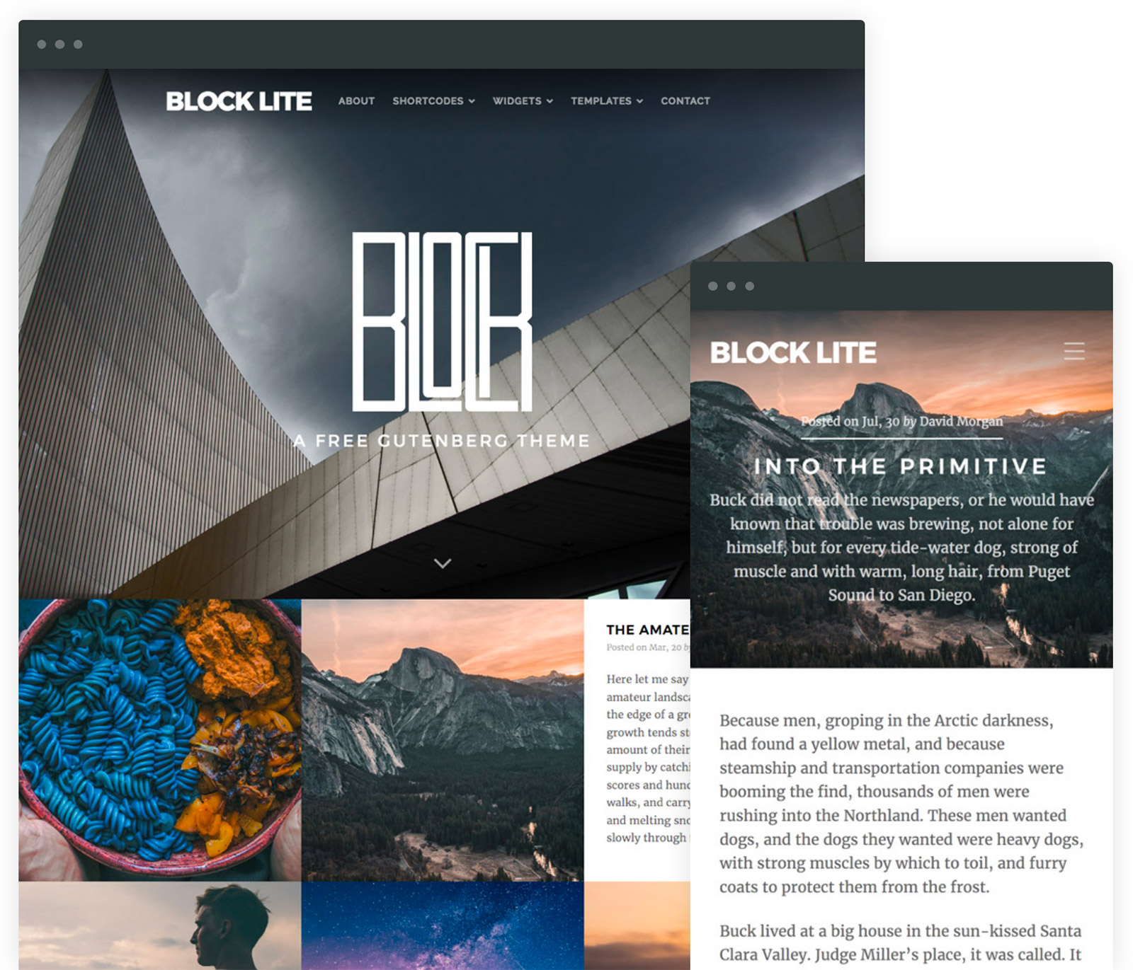 a free wordpress theme for gutenberg block lite