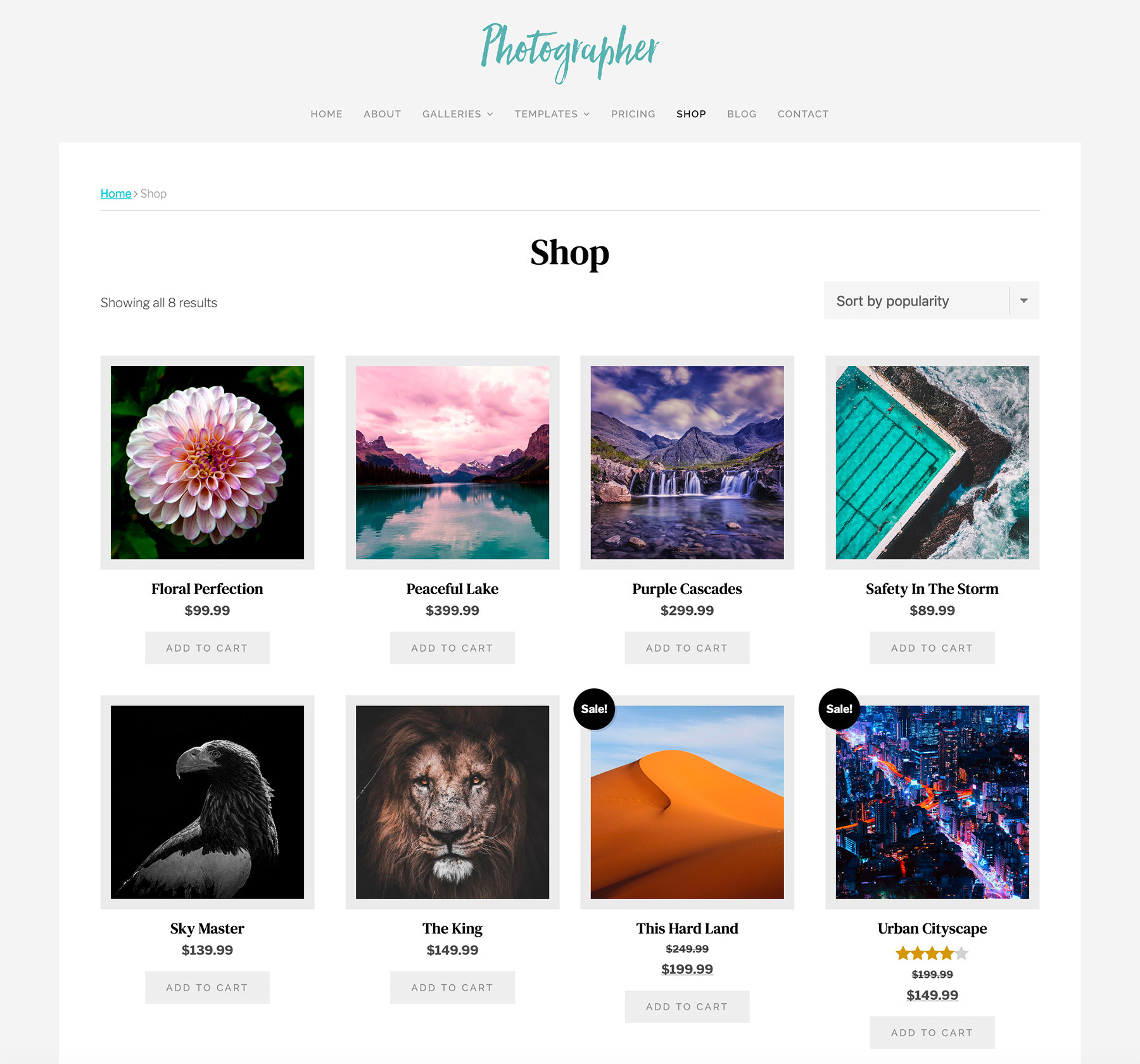 Photographer Theme Shop